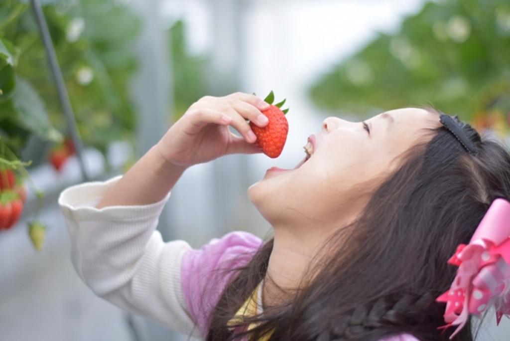 果物を食べる